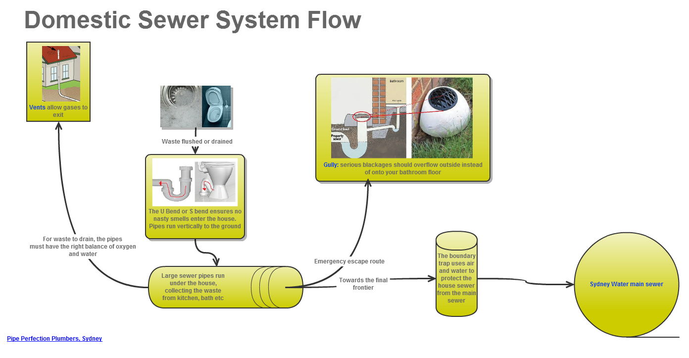 Reasons behind blocked sewer pipe perfection plumbers for Sewer system diagram