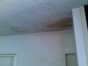 plumbing leaks mould mildew